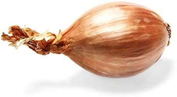 Onion Shallot Organic, 1 Each