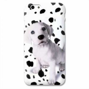 coque iphone 6 dalmatien