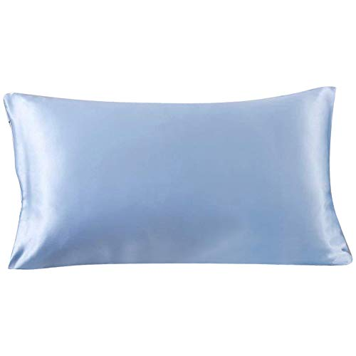 SLPBABY 100% Natural Pure Silk Pillowcase for Hair and Skin, Both Side 19 Momme Silk, Luxury Smooth Satin Pillowcase Cover with Hidden Zipper (Standard(20''x26''), Light Blue)