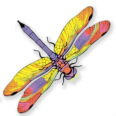 w Clings to Prevent Bird Strikes on Window Glass - Dragonfly Window Clings (set of 8) ()