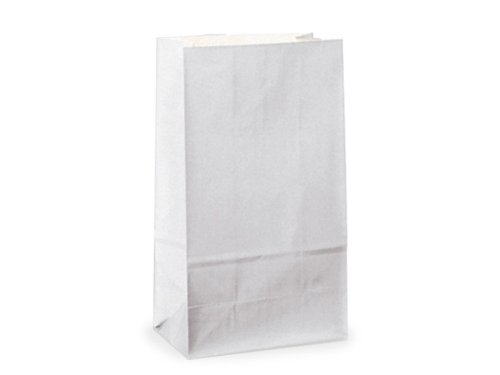 "BULK 6 lb Gift Sacks WHITE KRAFT6"" x 3-5/8"" x 11-1/16"" 1 unit, 500 pack per unit."