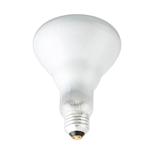 Pack of 6 65BR30/FL 65 Watt BR30 Reflector Incandescent E26 Medium Base 120 Volt Indoor Flood Light Bulb 2