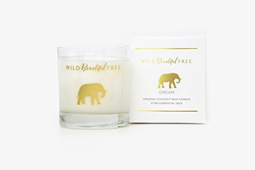organic-candle-dream-lavender-vanilla-essential-oils-wild-beautiful-free-coconut-wax-aromatherapy-gr