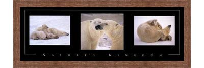 Framed Nature's Kingdom-Polar Bears- 36x12 Inches - Art Print (Brown Barnwood Frame)