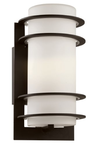 Trans Globe Lighting 40204 BK Outdoor Wall Light with White Glass Shade, Black Finished Review