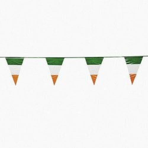Fun Express Irish Flag Pennant -