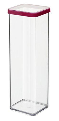Rotho Vorratsdose Premium Loft - aromadichte Aufbewahrungsbox - BPA-freie Frischhaltedosen - Kunststoffbehälter ist spülmaschinentauglich - Inhalt 2 l - Form quadratisch - ca. 10 x 10 x 28.5 cm (LxBxH) - transparent/transparent- 1160600096