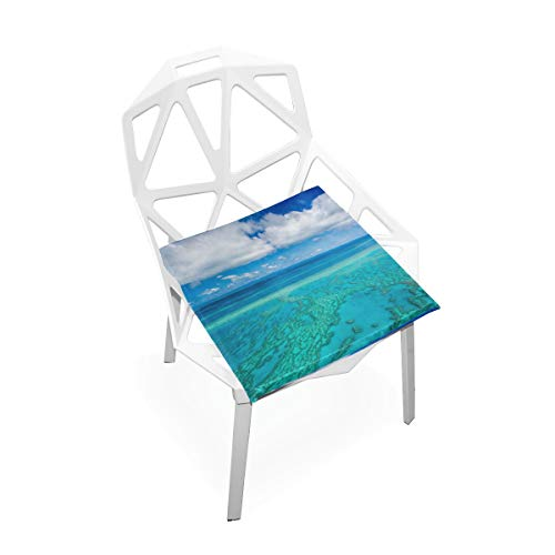 Gednix Australia Great Barrier Reef Coral Custom Soft Non-Slip Square Memory Foam Chair Pads Cushions Seat for Home Kitchen Dining Room Office Wheelchair Desk Furniture Indoor 16x16 Inch (Queensland Outdoor Furniture)