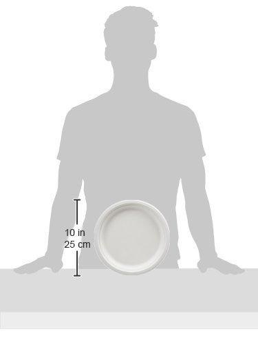 AmazonBasics 10-Inch Compostable Plates, 500-Count by AmazonBasics (Image #4)