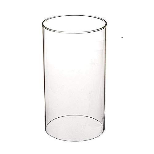 SUNWO Borosilicate Glass Clear