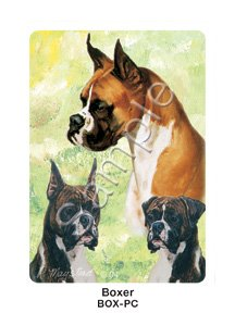 Best Friends Playing Cards, by Ruth Maystead - Boxer