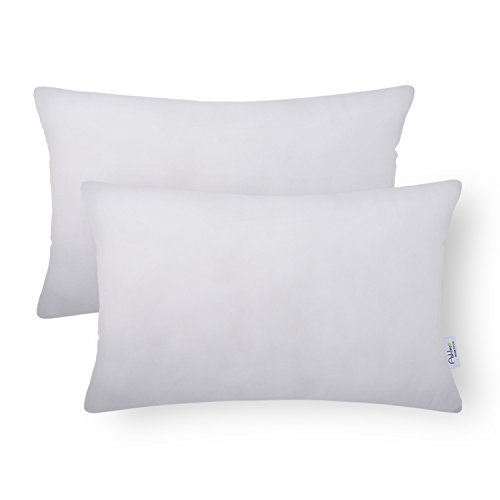 - Ashler Pack of 2 HypoallergenicSquare Throw Pillow Inserts Polyester Sham Standard 12 x 20 inches