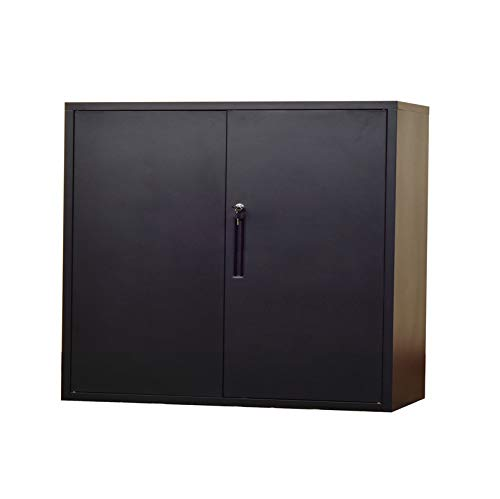 Lockable Cupboard - Metal Office File Cabinet 30 inch Height,Lockable Swing DoorTwo Layer Steel Cupboard with Two Layer (Black, HF-760)