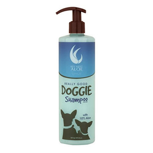 (Key West Aloe Really Good Doggie Shampoo)