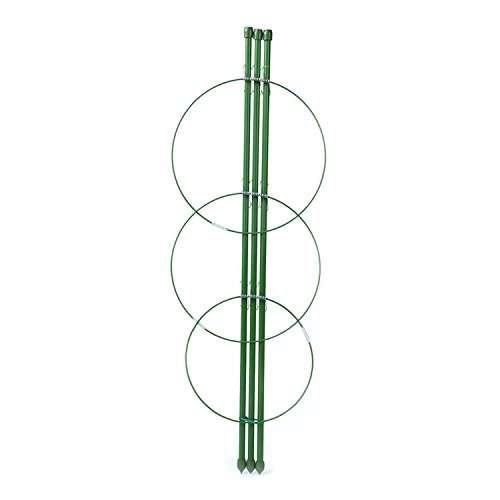 3-Pack Tomato and Plant Support Cage, 45cm by rescozy