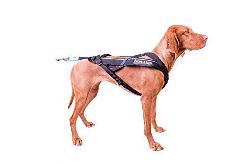 Non-stop dogwear Freemotion Harness (7) by Non-stop dogwear (Image #5)