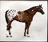 Pegasus Originals Appaloosa Counted Cross Stitch Kit