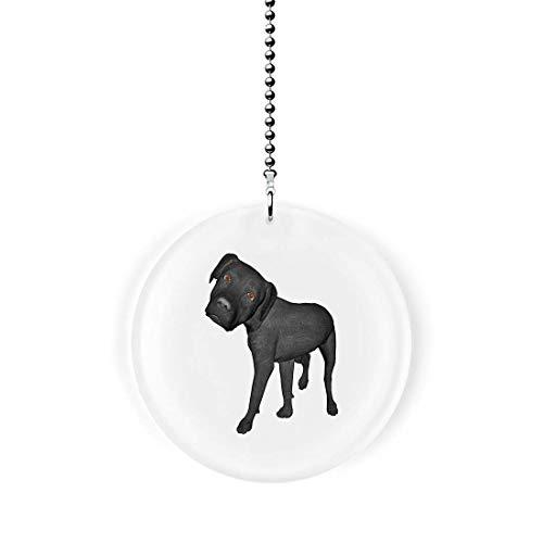 - Mega Noggin Black Labrador Dog Fan/Light Pull