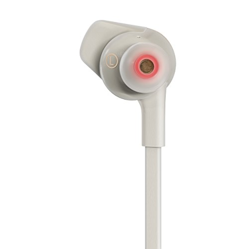 Fitbit Flyer Wireless Headphones, Lunar Gray by Fitbit (Image #2)