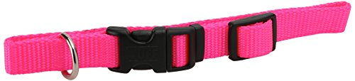 Coastal Pet Products DCP6401NPK 5/8-Inch Nylon Adjustable Dog Collar, Small, Neon Pink