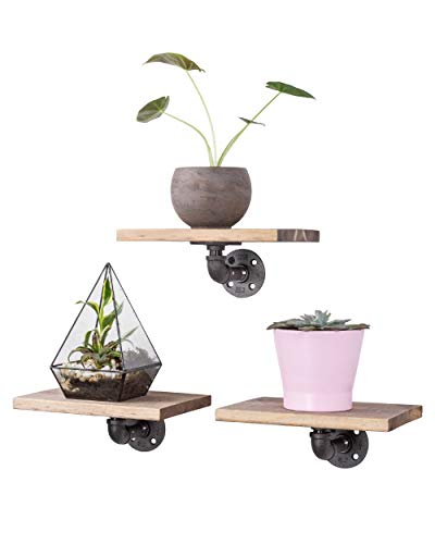Industrial Pipe Floating Shelves with Wood, 3 Pack Medium Grey Pine Wood Shelving by Pipe Decor, Rustic Iron Brackets and Pipes, Wall Mounted Hanging Shelf, Reclaimed Barnwood Aesthetic, 10 Inch Board ()