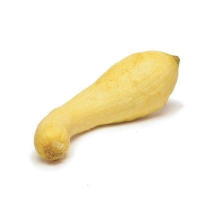 Todd's Seeds Golden Summer Crookneck Squash Heirloom Seed : Vegetable Plants : Garden & Outdoor