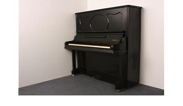 tetsch & May exterior Sordina 137 usado: Amazon.es: Instrumentos musicales