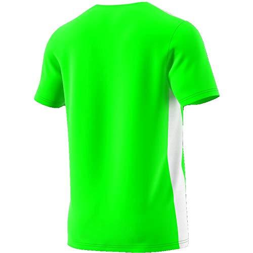 solar Uomo 18 shirt T Entrada white Green Adidas Verde xqYwTRnB