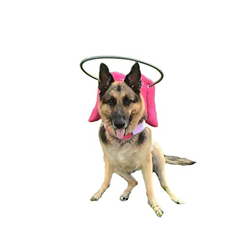 Muffin's Halo Blind Dog Harness Guide Device - Help for Blind Dogs or Visually Impaired Pets to Avoid Accidents & Build Confidence - Ideal Blind Dog Accessory to Navigate Surroundings - Pink- 2XL