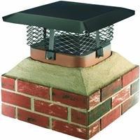 Most Popular Chimney Caps