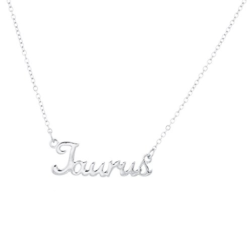 lux-accessories-horoscope-zodiac-sign-taurus-silver-necklace