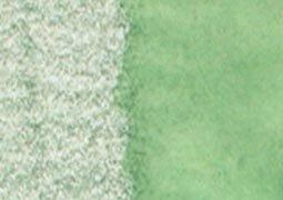 (Caran D'ache Caran D''ache Supracolor Pencil, Spruce Green (3888.239))