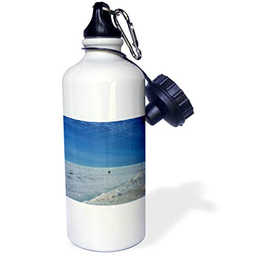 3dRose Dreamscapes by Leslie - Scenery - Couple Walking on Lake Michigan ice - 21 oz Sports Water Bottle (wb_292229_1) by 3dRose