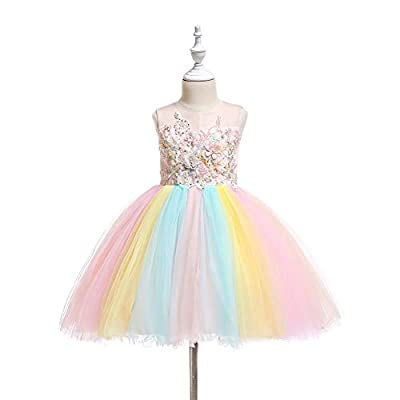 Baby Girls Flower Fairy Costume Princess Rainbow Dress up Birthday Pageant Party Wedding Dance Outfits Short Gown: Clothing