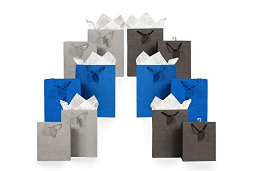 - Metallic Glitter Gift Bag Assortment 2 Sizes 12 Bags Featuring Satin Ribbons, Gift Tags, Tissue Paper (Silver, Blue, Gunmetal)
