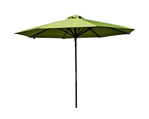 (Heininger 9 Foot 1286 DestinationGear Classic Wood Lime 9' Market Umbrella )