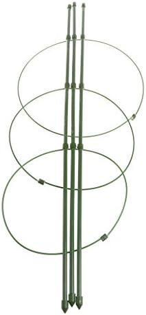 ✿ Rankhilfe für Gartenpflanzen, 45 cm, 60 cm 60
