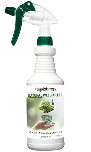 (OrganicMatters Natural Weed Killer Spray, No Glyphosate, People, Pets and Eco-Friendly, Results in Less Than 24-Hours (32 oz)