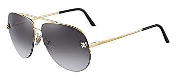 Gafas de Sol Cartier CT0065S GOLD/BROWN unisex adulto ...