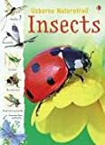 Insects (Usborne Nature Trail)