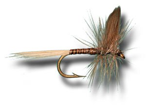 Blue Quill Fly Fishing Fly - Size 12 - 3 Pack