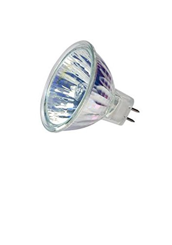 Outdoor Landscape Light Bulbs in Florida - 4