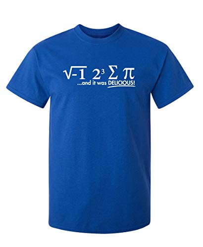 I Ate Some Pi Day It was Delicious Sarcastic Funny T Shirt L Royal