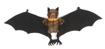 Amazon Com Fiesta Toys 315 Fruit Bat Plush Stuffed Animal Toy