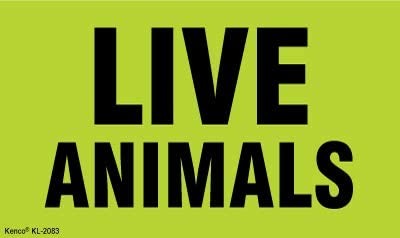 Live Animals Labels//Stickers 500 Labels Per Roll Fluorescent Green 3 x 5 1 Roll