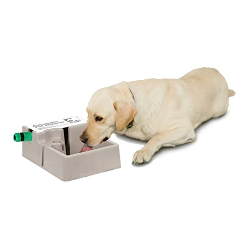 new Z-COMFORT 2-in-1 Automatic Pet Waterer