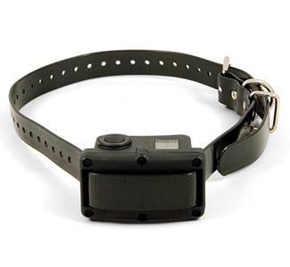 SportDOG Rechargeable NoBark 10R Bark Control Collar, My Pet Supplies