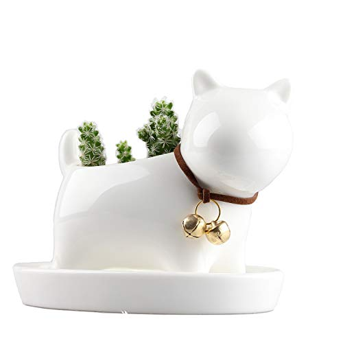Modern Simple Balcony Small Planter Little Dog Milky Cream White Ceramic Succulent Plant Flower Pot Miniature Decoration Flowerpot with Tray Neck with Bell Weaving Tail 4.5 x 2.36 x 3.46inches