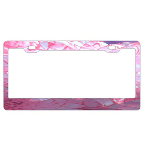 Hopes's Auto License Plate Frame License Plate Frame Car Tag Standard Size US CAN Carplate Frame 12×6 inches - Pink Petal