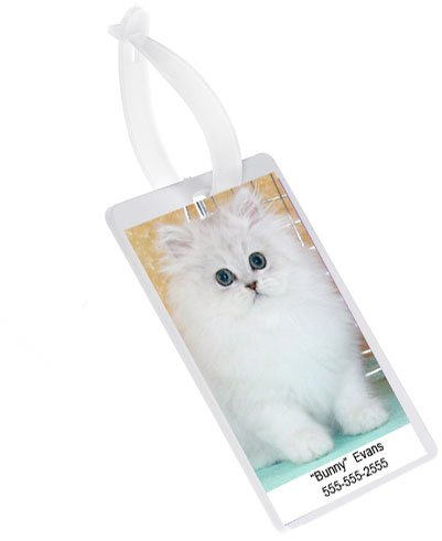 (DryFur Pet Carrier Picture Holder ID Tag - Luggage ID Tag - 2 Tags)